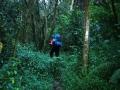 Fanie Botha hiking trail.
