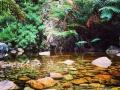 Greyton   Take a dip in the rock pools.