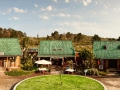 Wilderness | Visit the Timberlake Organic Village.