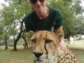 Living with Big Cats Programme