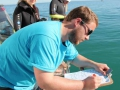 Living with Great White Sharks Programme