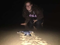 Living with Sea Turtles Programme