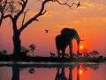 Sunset at the Kruger National Park.