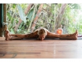 Mantis and Moon | Yoga Class