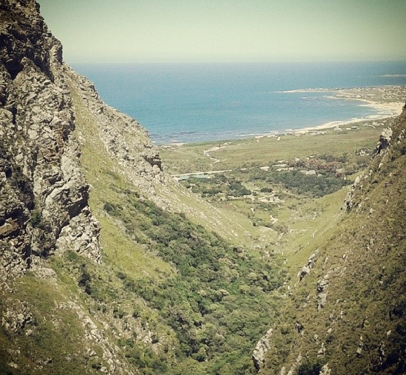 11. Nestled away in the quaint coastal town of Betty's Bay is the Harold Porter National Botanical Gardens. The Leopard's Kloof day trail is but one of many pleasant Park walks that cater to the entire family. The hike ascends through thick coastal forest and is punctuated by vibrant limestone fynbos and Renosterveld all the way up to the Leopard's Kloof waterfall.
