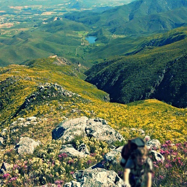 7. In addition to being the third oldest town in South Africa, Swellendam is also home to one of the most scenic hikes in the country. For any avid flower lovers, the hike is a must. There are some 30 members of the erica family to be found in the area including some that are only to be found in these mountains. The full hike is done over 6 days, and should only be attempted by more veteran hikers; shorter trail options are also available for the less experienced.