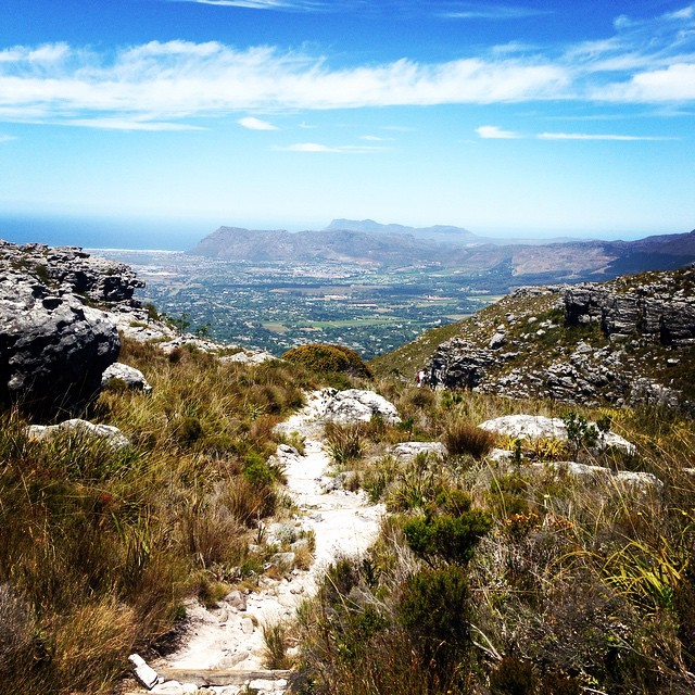 8. Arguably one of the most scenic routes of hiking Table Mountain is Skeleton Gorge. While the trails's first half is largely limited to forested ravines, the second half takes in the majority of Table Mountain's floral zones, and offers magnificent panoramic views of Cape Town. The return hike taxes approximately 6- 8 hours to complete.