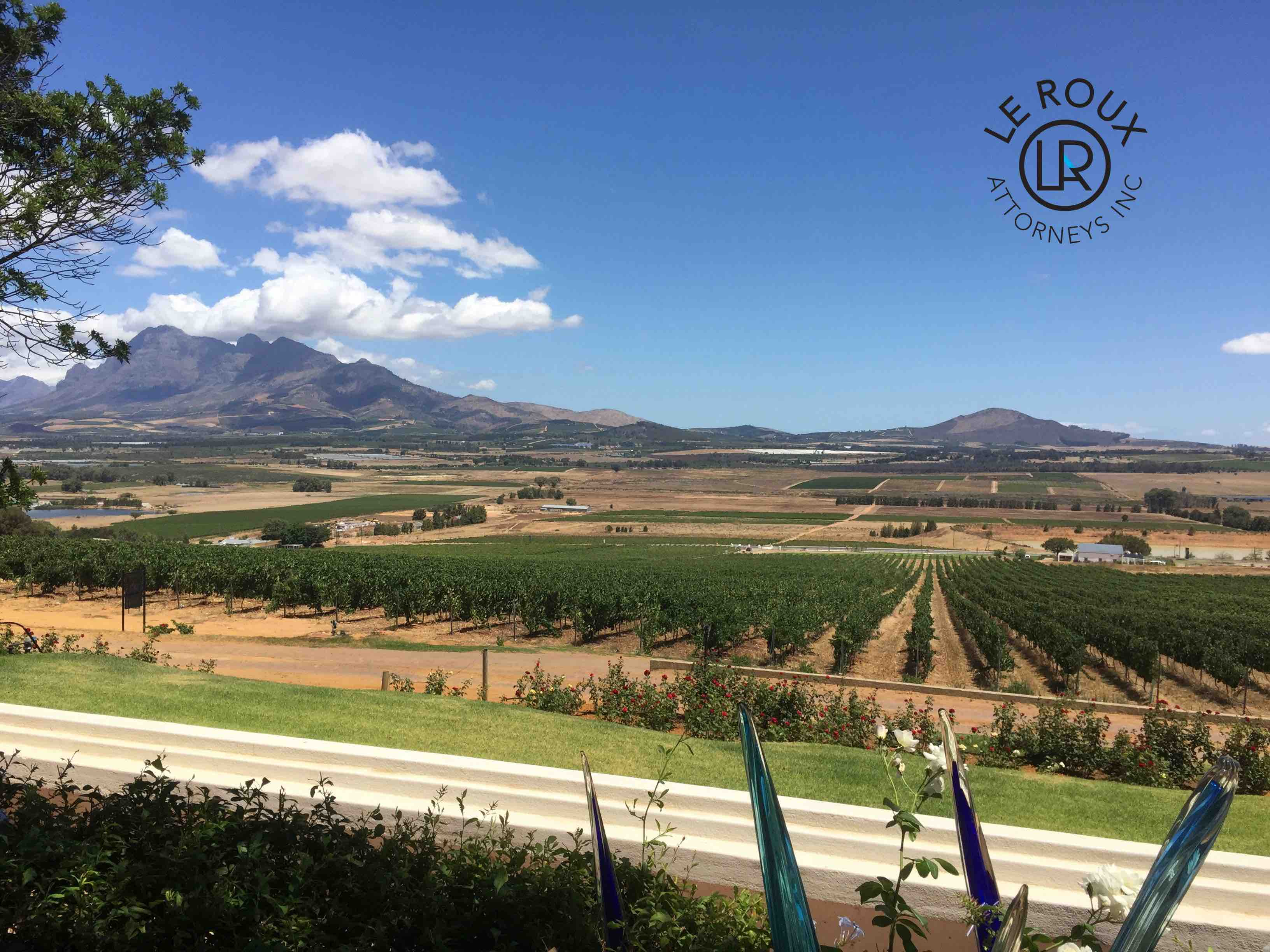 Cape Town Wine Farms